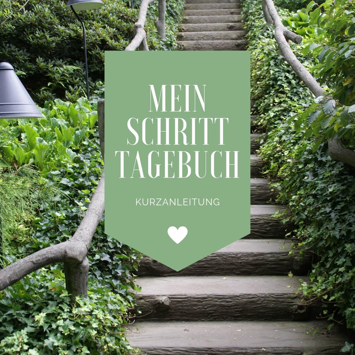 MeinSchrittTagebuch-Kurzanleitung