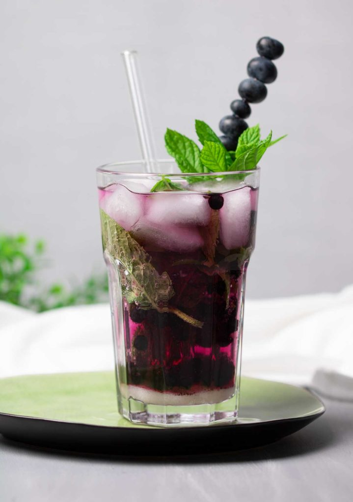 Blueberry-Mojito-Low-Carb-Cocktails-Diana-Ruchser